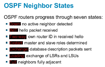 ospf neighbor